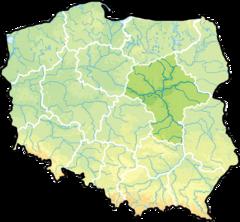 Diagnoza Warszawa Piaseczno Piastów